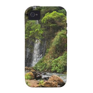 Caso del iPhone 4 de la cascada de la selva tropic Vibe iPhone 4 Fundas