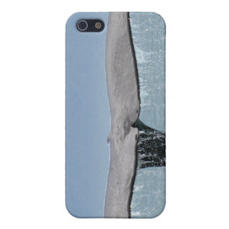 Caso del iPhone 4 de la cola de la ballena iPhone 5 Cobertura