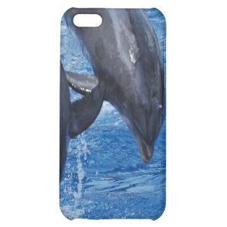 Caso del iPhone 4 de la demostración del delfín