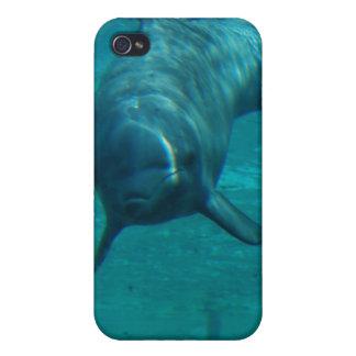 Caso del iPhone 4 de la estrella del delfín iPhone 4 Carcasas
