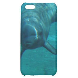 Caso del iPhone 4 de la estrella del delfín