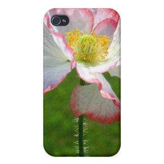 Caso del iPhone 4 de la flor de la amapola iPhone 4 Cárcasa