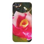 Caso del iPhone 4 de la flor rosada y blanca iPhone 5 Protectores