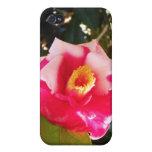 Caso del iPhone 4 de la flor rosada y blanca iPhone 4 Protectores