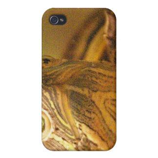 Caso del iPhone 4 de la foto de la tortuga iPhone 4/4S Carcasas