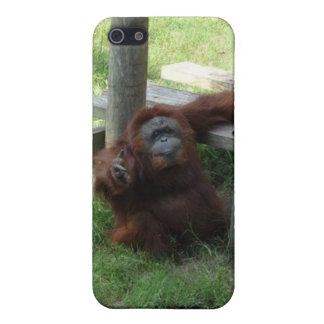 Caso del iPhone 4 de la foto del orangután iPhone 5 Funda