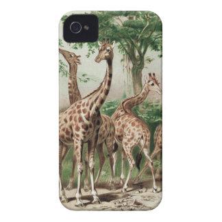 Caso del iPhone 4 de la jirafa Case-Mate iPhone 4 Fundas