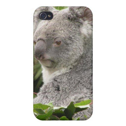Caso del iPhone 4 de la koala - fotos animales iPhone 4/4S Funda