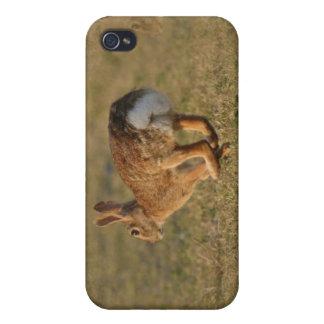 Caso del iPhone 4 de la lupulización del conejo iPhone 4/4S Carcasa
