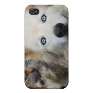 Caso del iPhone 4 de la manada de lobos iPhone 4 Fundas