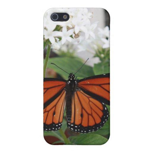 Caso del iPhone 4 de la mariposa de monarca iPhone 5 Fundas