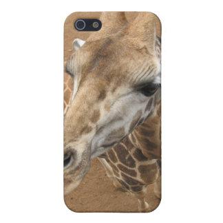 Caso del iPhone 4 de la mirada de la jirafa iPhone 5 Cobertura