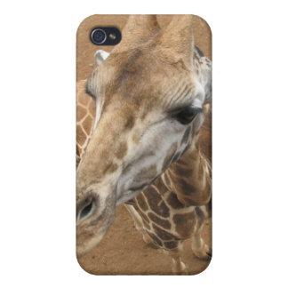 Caso del iPhone 4 de la mirada de la jirafa iPhone 4/4S Fundas