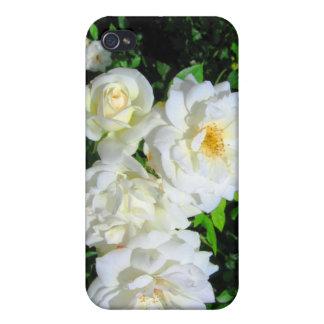 Caso del iPhone 4 de la mota de los rosas blancos iPhone 4/4S Funda