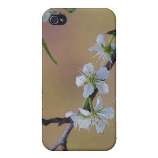 Caso del iPhone 4 de la puntilla de la primavera iPhone 4/4S Carcasa