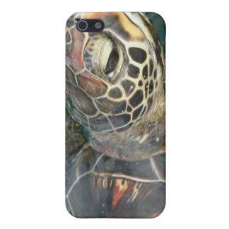 Caso del iPhone 4 de la tortuga de la natación iPhone 5 Coberturas
