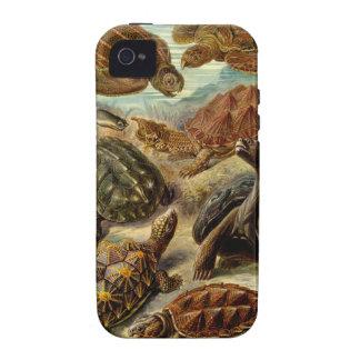 Caso del iPhone 4 de la tortuga iPhone 4/4S Carcasas
