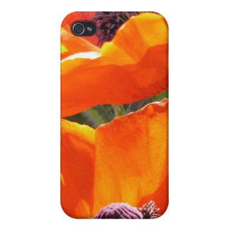 Caso del iPhone 4 de las amapolas que hace estalla iPhone 4/4S Carcasas