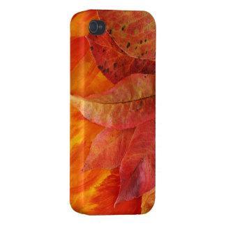 Caso del iPhone 4 de las hojas de otoño iPhone 4/4S Carcasa