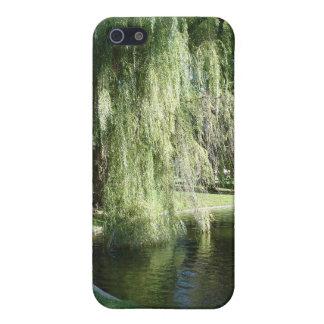 Caso del iPhone 4 de los jardines públicos de Bost iPhone 5 Funda