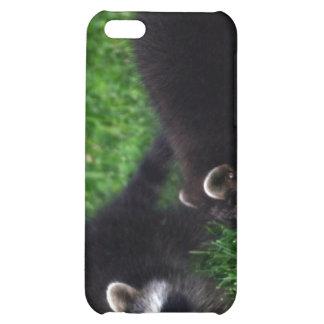 Caso del iPhone 4 de los mapaches del bebé
