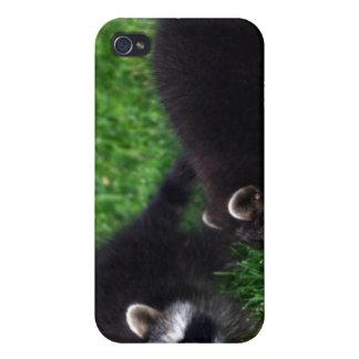 Caso del iPhone 4 de los mapaches del bebé iPhone 4 Carcasa