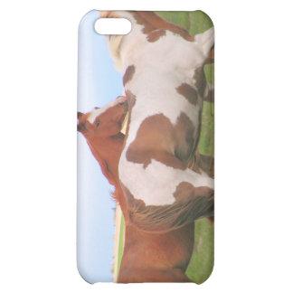 Caso del iPhone 4 de los pares del caballo