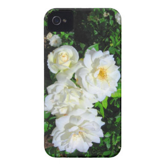 Caso del iPhone 4 de los rosas blancos iPhone 4 Cárcasas