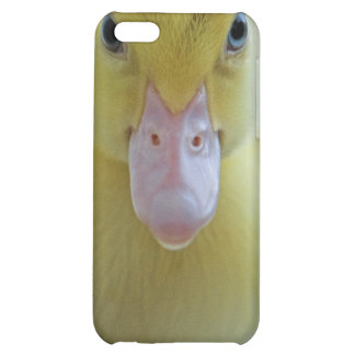 Caso del iPhone 4 del anadón