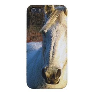 Caso del iPhone 4 del caballo blanco iPhone 5 Coberturas