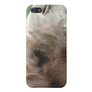 Caso del iPhone 4 del camello árabe iPhone 5 Cobertura