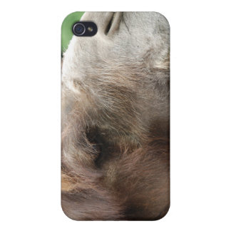 Caso del iPhone 4 del camello árabe iPhone 4/4S Carcasas