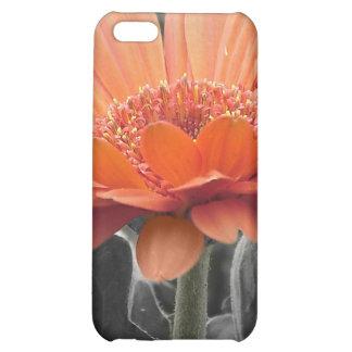 Caso del iPhone 4 del chapoteo del color de la mar