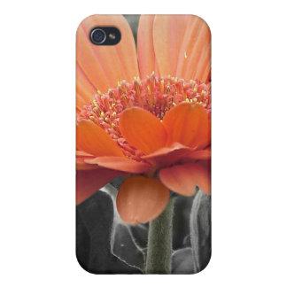 Caso del iPhone 4 del chapoteo del color de la mar iPhone 4 Protectores