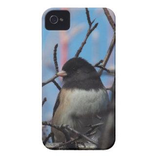Caso del iPhone 4 del Chickadee iPhone 4 Case-Mate Funda