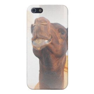 Caso del iPhone 4 del collage del camello iPhone 5 Fundas