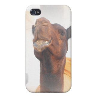 Caso del iPhone 4 del collage del camello iPhone 4 Funda