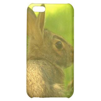 Caso del iPhone 4 del conejo de conejito