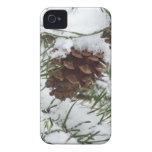 Caso del iPhone 4 del cono del pino Nevado iPhone 4 Cárcasa