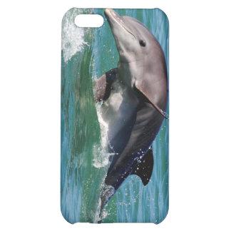 Caso del iPhone 4 del delfín