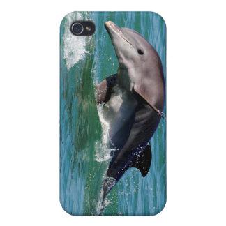 Caso del iPhone 4 del delfín iPhone 4 Funda