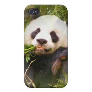 Caso del iPhone 4 del hábitat de la panda iPhone 4 Carcasas