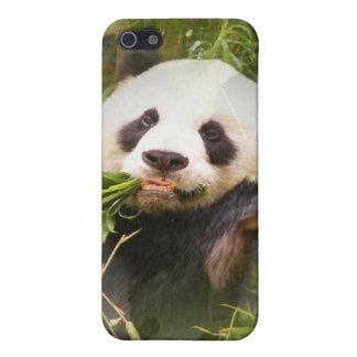 Caso del iPhone 4 del hábitat de la panda iPhone 5 Cobertura