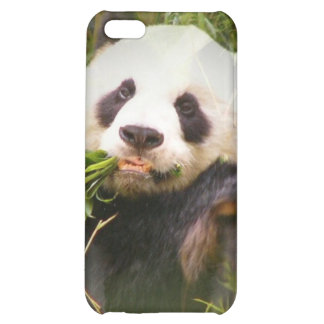 Caso del iPhone 4 del hábitat de la panda