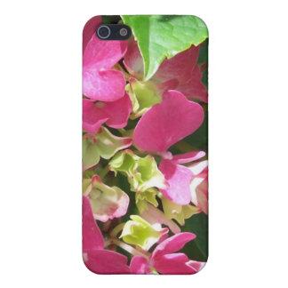 Caso del iPhone 4 del Hydrangea de las rosas fuert iPhone 5 Cárcasas