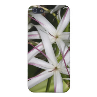 Caso del iPhone 4 del lirio de la reina Emma iPhone 5 Protectores