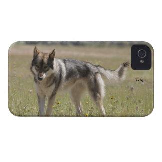 Caso del iPhone 4 del lobo gris iPhone 4 Cobertura