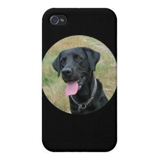 Caso del iphone 4 del negro del perro del labrador iPhone 4 coberturas