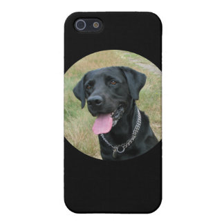 Caso del iphone 4 del negro del perro del labrador iPhone 5 carcasa