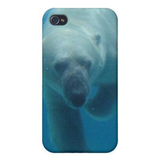 Caso del iPhone 4 del oso polar que nada iPhone 4/4S Carcasas